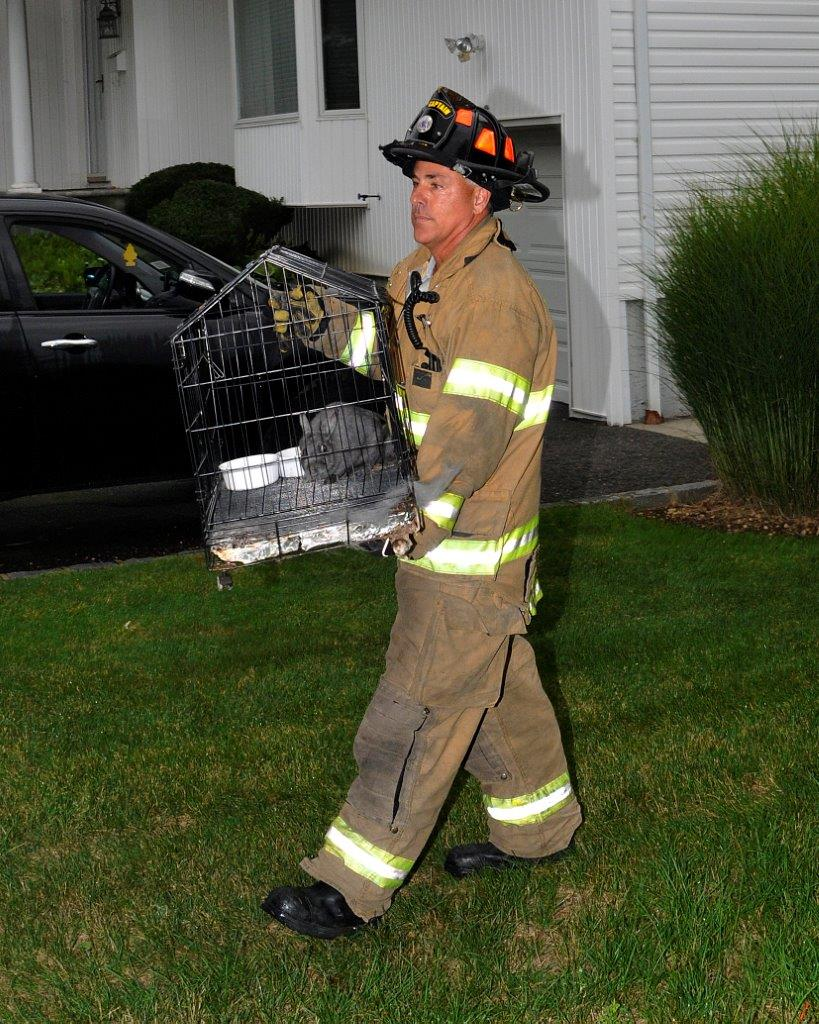 A fireman rescues a pet bunny from the home.