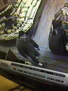 Burglary Suspect #2