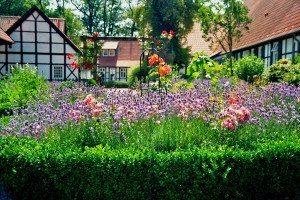 Beneficial bacteria can make a healthy garden.