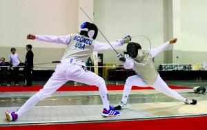 Fencing__B